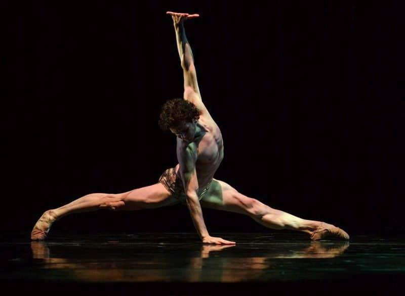 Boek 'Dancer', ode aan de Dans